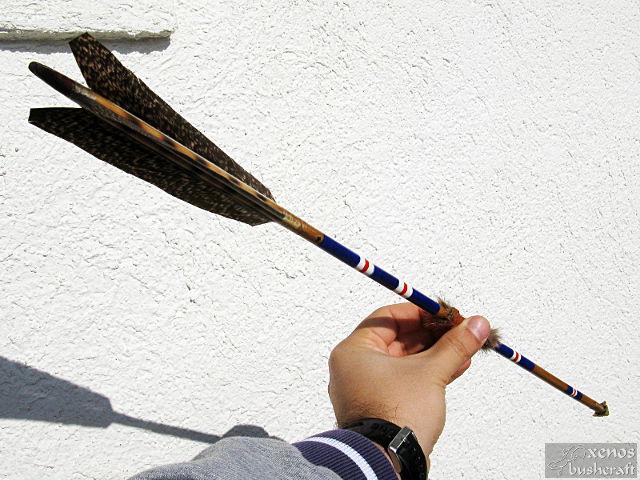 Индианска стрела No.4 - Цялостен вид