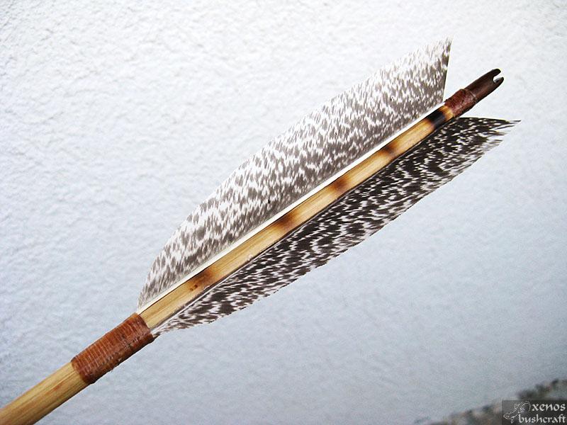 Още една индианска стрела... Оперението.