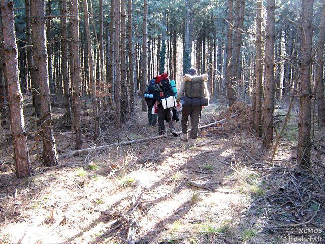 През гората - Шуменско плато - 16.02.2014