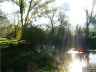 Среща на Басарбово - 22-24.10.2010 - Утринни лъчи