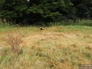 Лагер-сбор - Шуменско плато - 24-26.09.2010 - На тръгване