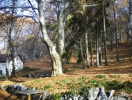 Хижа Чавдар, Буново - 26-27.11.2011 - снимка 4/19