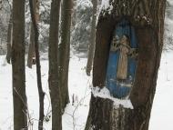 Среща на Кръстец - 22-23.01.2011 - До Царски кладенец
