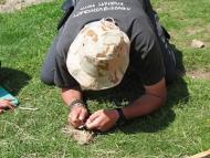 Среща на Осогово - 04-06.06.2011 - Състезанието