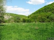 Русенски Лом - 28-30.04.2012 - В търсене на поляна