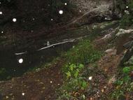 Странджа - 15-17.10.2011- Реката