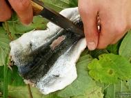 Риба по индиански - Разпъване