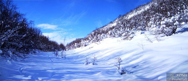 По пътя ; Фотоотчет - 24.01.2010 ; 1/34