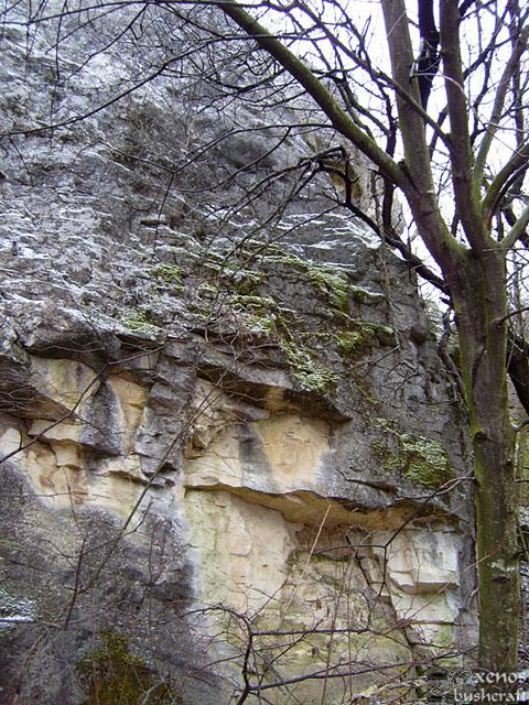 Фотоотчет - 17.01.2010 - Шуменско плато - (3/7)
