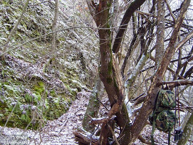 Фотоотчет - 17.01.2010 - Шуменско плато - (4/7)