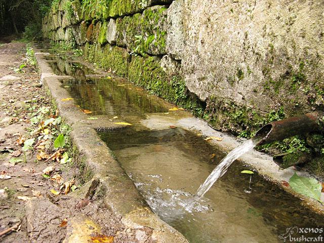 Фотоотчет - 29 август 2010 - Шуменско плато - Ремонтираната Голяма Халваджийска чешма - 19/24
