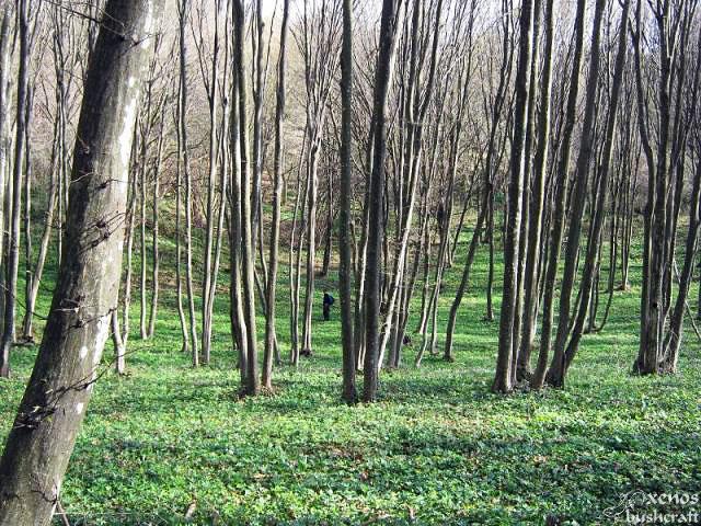 Фотоотчет - Шуменско плато - 7.04.2012 - Въртоп