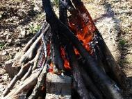Огънят ; Фотоотчет - 27.03.2010 ; 6/22