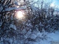 Фотоотчет - 24.01.2010 ; 32/34