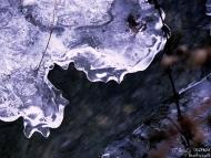 с. Могила, Мадарско плато - 03.12.2011 - 11/21