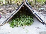 Little Island Survival - Подслона
