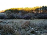 Слънцето огрява върховете на боровете - Орлова чука, 29-30.12.2009