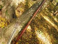 Шуменско плато - 01.11.2011 - Вторият ми лък