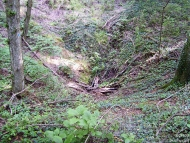 Шуменско плато - 17.07.2009 - Въртопи