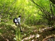 Шуменското плато - 06.05.2009