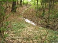 Фотоотчет - 29 август 2010 - Шуменско плато - Рекичка в Троишки боаз - 17/24