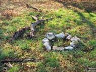 Огнище - Шуменско плато - 21.11.2010 - 1/18