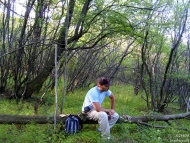 Вече сме на равното. Кратка почивка върху дънера на повалено от бурите дърво.