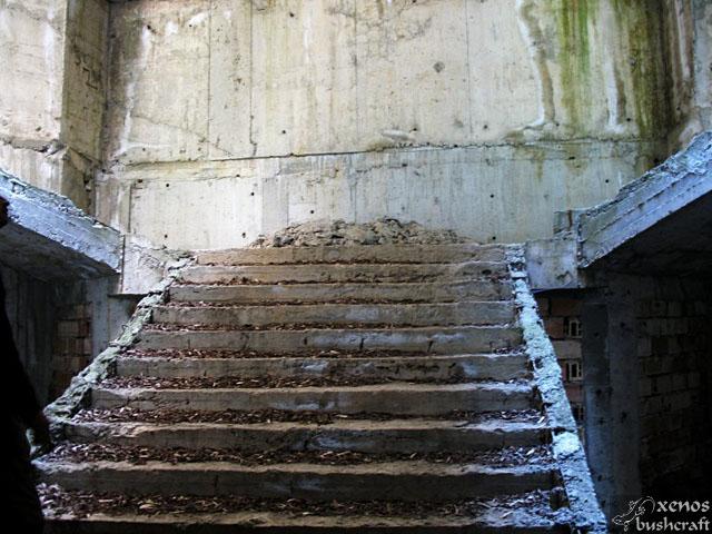 Стигаме до стълбището, водещо до втория етаж. Обрасло е с мъх и е засипано с купчини чакъл и отломки. Неволно се сещам за снимките от града-призрак Припят до Чернобил.
