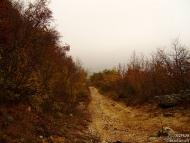 Пътят над вилната зона.