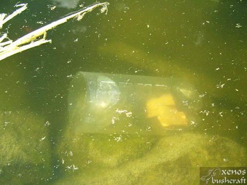 Капан за риба от пластмасова бутилка - Залагане на капана