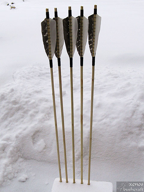 Дрянови стрели - Цялостен вид