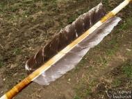 Стрели за Атлатъл - Спираловидно укрепване на перата
