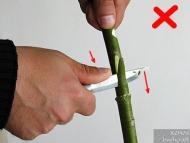 Ножът за Бушкрафт - фиг.19а