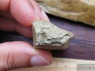 Кремъчни люспи-остриета или ядра, намерени край Никопол