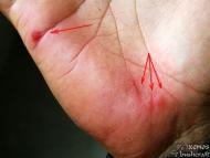 Hand Drill (Ръчен свредел) - Пришки