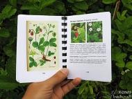 "Моят наръчник ""Полезни растения"" в готов вид"