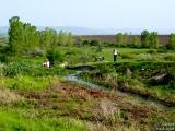 Бракониери на Марашкия язовир - 20.04.2008.