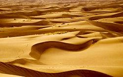 Пустинята е екстремно сухо място