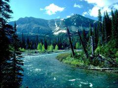 Планинска река