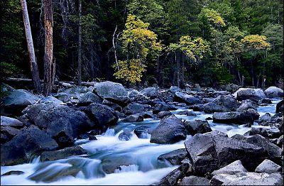 Чиста планинска река